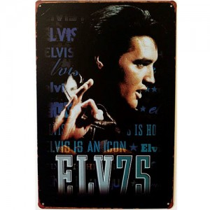 Placa de Metal Decorativa Elvis Presley Rei do Rock Elv75 Retrô Vintage